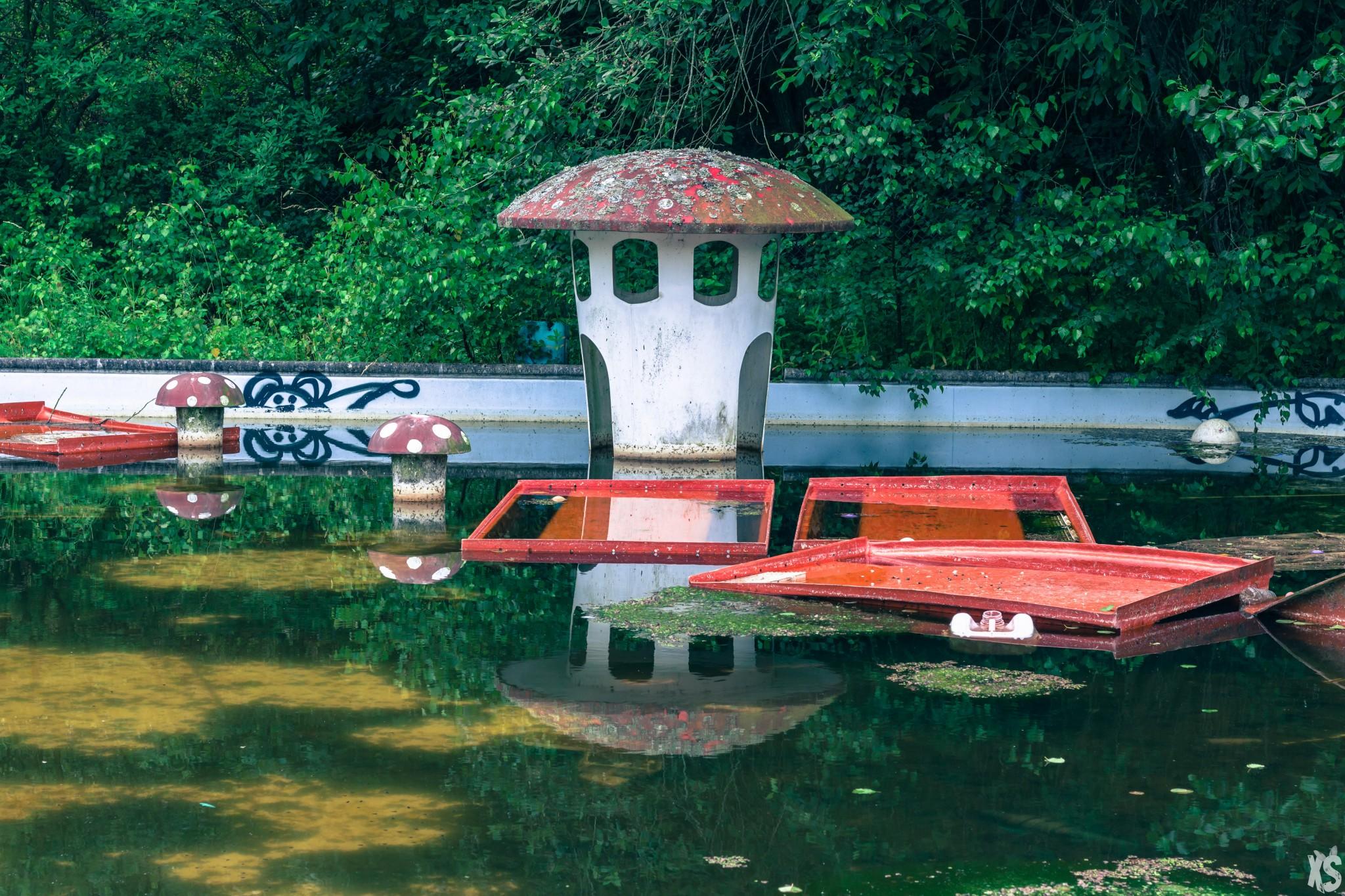 parc-aquatique-wayne-lo-18