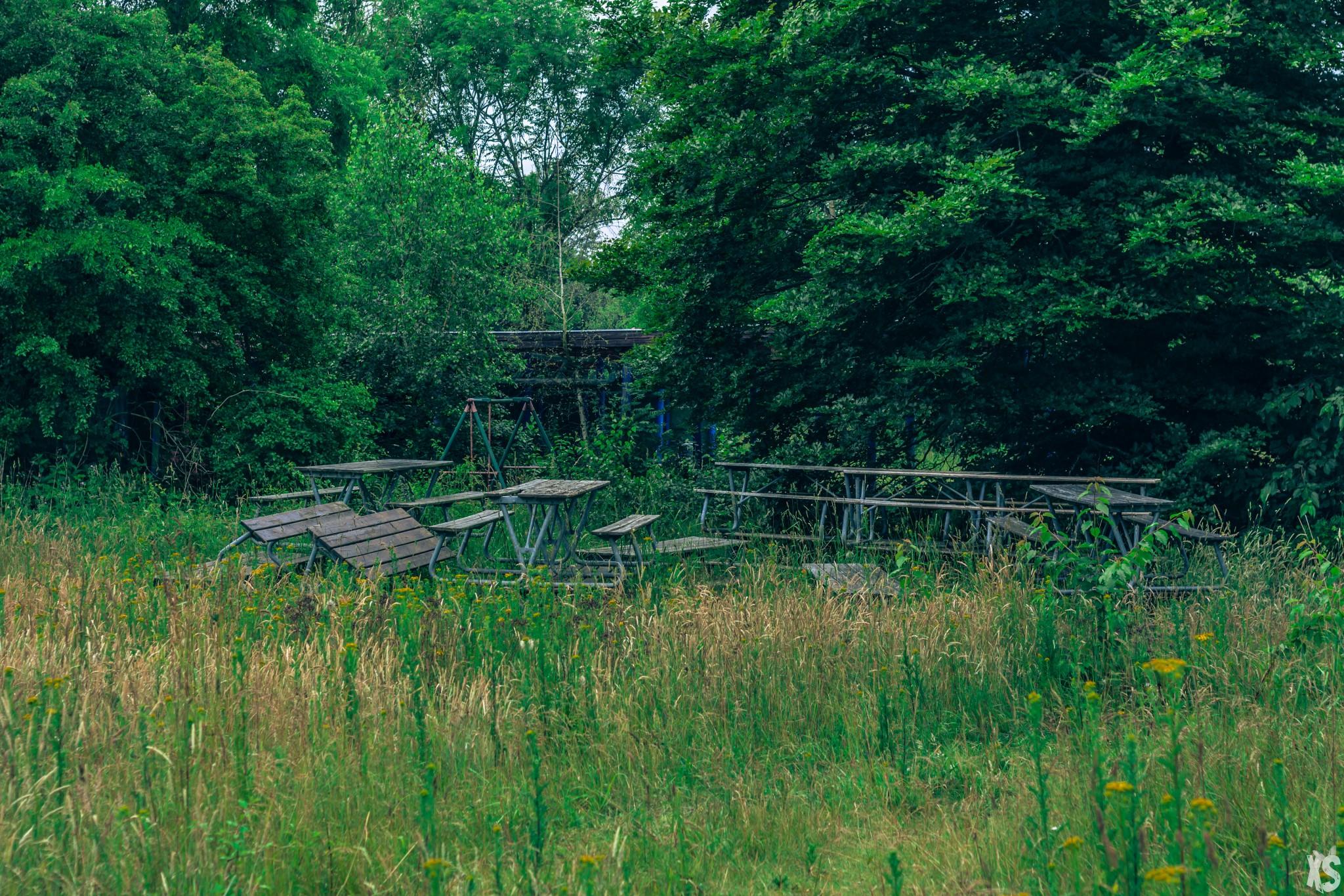 parc-aquatique-wayne-lo-31
