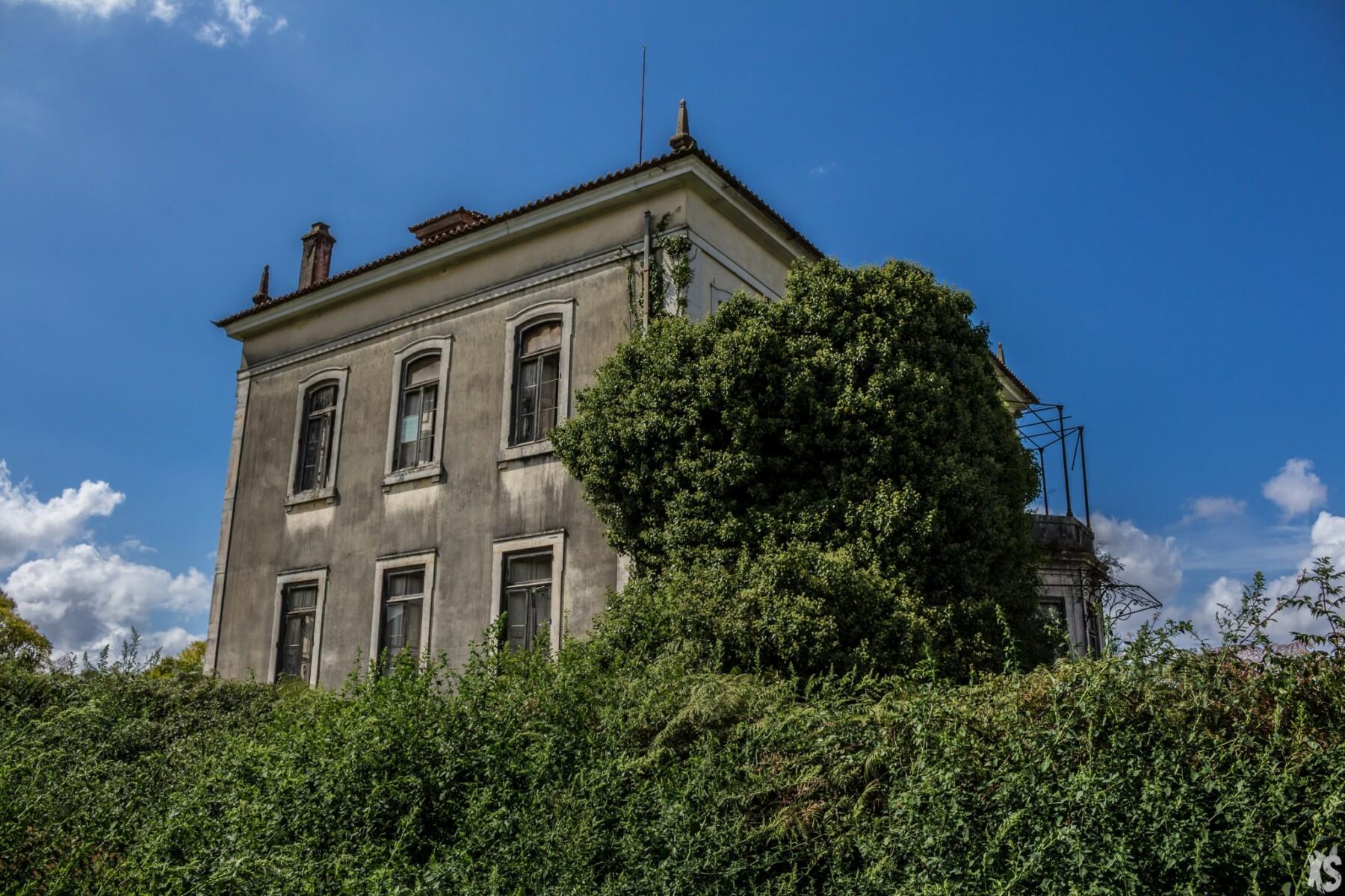 palais-louise-vermilyea-14