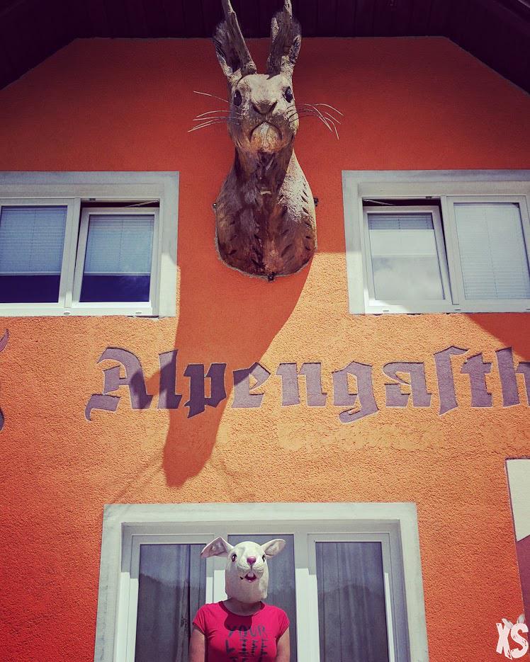 marie-wolpertinger
