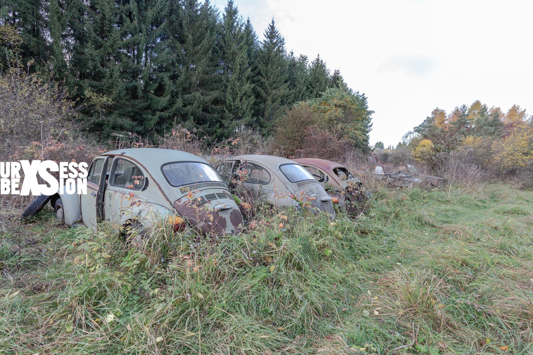 cimetiere-vehicules-fritzl-4