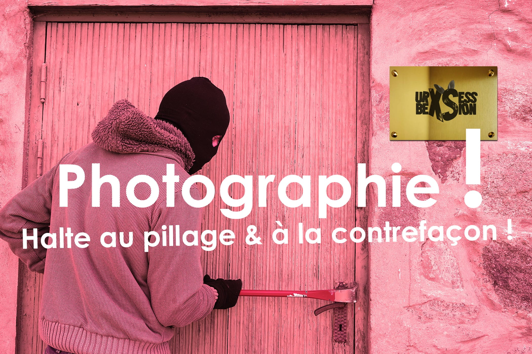 photographie-pillage-contrefacon