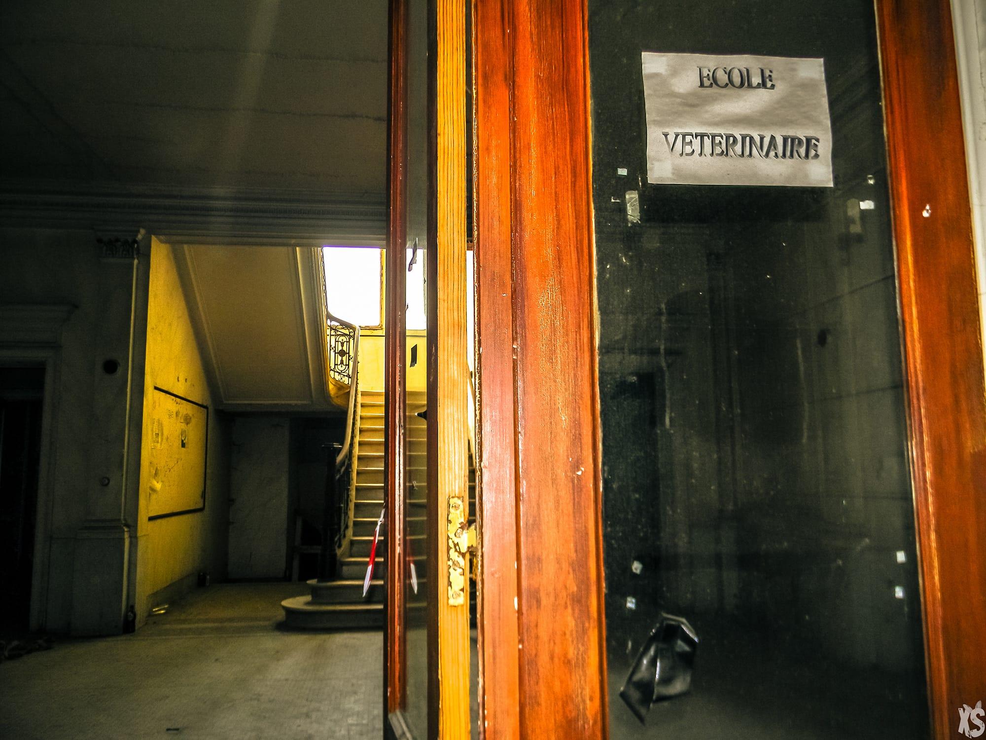 ecole-des-veterinaires-anderlecht-2