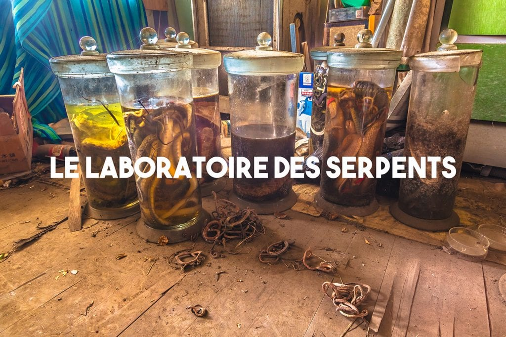 Le Laboratoire aux Serpents Abandonné - Urbex Japon